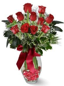 9 adet gül  Gaziantep çiçek yolla , çiçek gönder , çiçekçi   kirmizi gül