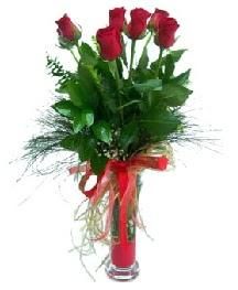 vazo içerisinde 5 kırmızı gül  Gaziantep çiçek siparişi vermek