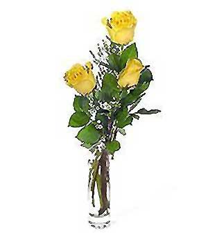 Gaziantep çiçek gönderme sitemiz güvenlidir  3 adet kalite cam yada mika vazo gül