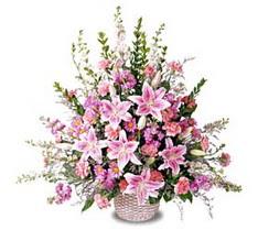 Gaziantep online çiçekçi , çiçek siparişi  Tanzim mevsim çiçeklerinden çiçek modeli