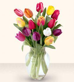 Gaziantep İnternetten çiçek siparişi  13 adet cam yada mika vazoda laleler
