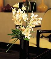 Gaziantep İnternetten çiçek siparişi  cam yada mika vazo içerisinde dal orkide