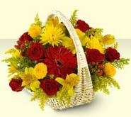 Gaziantep ucuz çiçek gönder  sepette mevsim çiçekleri
