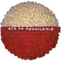arma anitkabire - mozele için  Gaziantep 14 şubat sevgililer günü çiçek