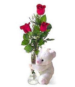 oyuncak ve 3 adet gül  Gaziantep online çiçekçi , çiçek siparişi