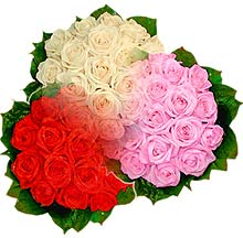 3 renkte gül seven sever   Gaziantep çiçek mağazası , çiçekçi adresleri