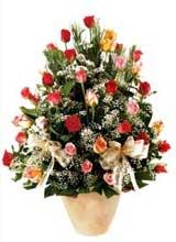 91 adet renkli gül aranjman   Gaziantep 14 şubat sevgililer günü çiçek