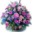 karisik mevsim kir çiçekleri  Gaziantep 14 şubat sevgililer günü çiçek