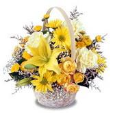 sadece sari çiçek sepeti   Gaziantep 14 şubat sevgililer günü çiçek