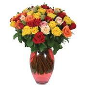 51 adet gül ve kaliteli vazo   Gaziantep 14 şubat sevgililer günü çiçek