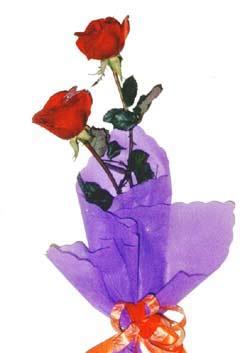 2  adet kirmizi gül buketi   Gaziantep çiçek mağazası , çiçekçi adresleri