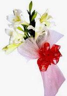Gaziantep çiçek mağazası , çiçekçi adresleri  ince vazoda gerbera ve ayi