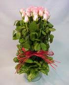 13 adet pembe gül silindirde   Gaziantep anneler günü çiçek yolla