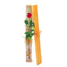 ince  kutuda  1  gül   Gaziantep anneler günü çiçek yolla