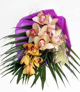 Gaziantep çiçek satışı  1 adet dal orkide buket halinde sunulmakta