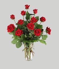 Gaziantep çiçek satışı  11 adet kirmizi gül vazo halinde