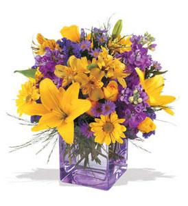 Gaziantep çiçekçiler  cam içerisinde kir çiçekleri demeti