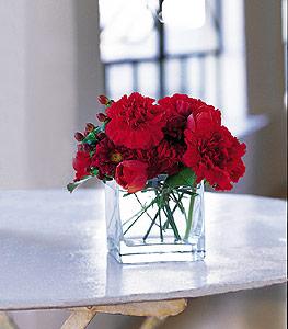 Gaziantep kaliteli taze ve ucuz çiçekler  kirmizinin sihri cam içinde görsel sade çiçekler