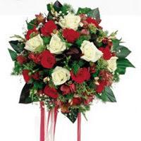 Gaziantep kaliteli taze ve ucuz çiçekler  6 adet kirmizi 6 adet beyaz ve kir çiçekleri buket