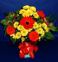 Gaziantep kaliteli taze ve ucuz çiçekler  sade hos orta boy karisik demet çiçek
