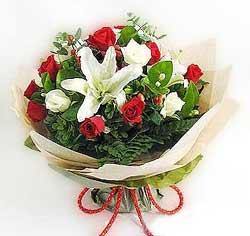 güller ve kazablanklardan görsel bir buket  Gaziantep çiçek yolla , çiçek gönder , çiçekçi