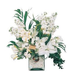 Gaziantep çiçek gönderme sitemiz güvenlidir  sadece beyazlardan olusmus mevsim cam yada mika tanzim
