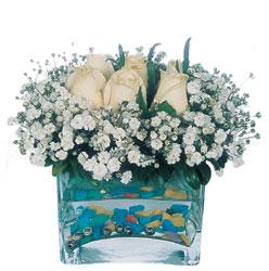 Gaziantep yurtiçi ve yurtdışı çiçek siparişi  mika yada cam içerisinde 7 adet beyaz gül