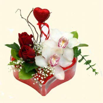 Gaziantep çiçekçi mağazası  1 kandil orkide 5 adet kirmizi gül mika kalp