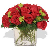 Gaziantep çiçek online çiçek siparişi  10 adet kirmizi gül ve cam yada mika vazo