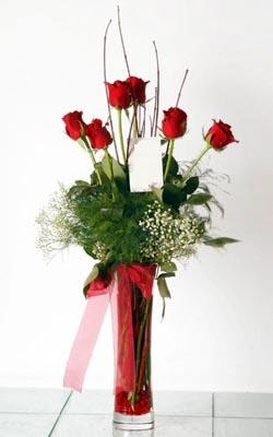 Gaziantep çiçek satışı  6 adet kirmizi gül ve cam yada mika vazo