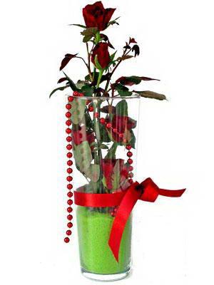 Gaziantep çiçek gönderme  Cam yada mika içerisinde 9 adet kirmizi gül - sevdiklerinize özel
