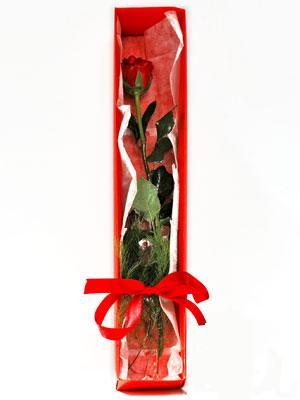Gaziantep online çiçek gönderme sipariş  1 adet kutuda gül