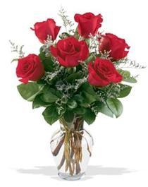 Gaziantep 14 şubat sevgililer günü çiçek  7 adet kirmizi gül cam yada mika vazoda sevenlere
