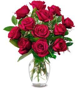 Gaziantep çiçek gönderme  1 düzine kirmizi gül sevenlere özel vazo gülleri