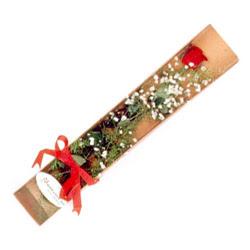 Gaziantep çiçek mağazası , çiçekçi adresleri  Kutuda tek 1 adet kirmizi gül çiçegi