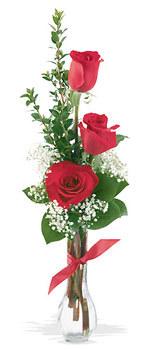 Gaziantep çiçek satışı  mika yada cam vazoda 3 adet kirmizi gül