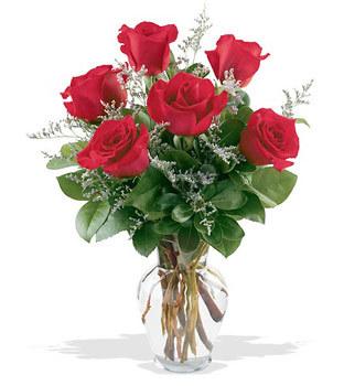 Gaziantep çiçek satışı  cam yada mika vazoda 6 adet kirmizi gül