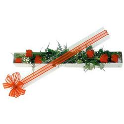 Gaziantep online çiçekçi , çiçek siparişi  6 adet kirmizi gül kutu içerisinde