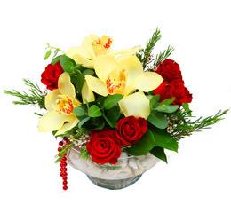 Gaziantep hediye sevgilime hediye çiçek  1 adet orkide 5 adet gül cam yada mikada