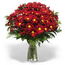 Gaziantep anneler günü çiçek yolla  Kir çiçekleri cam yada mika vazo içinde