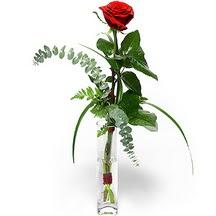 Gaziantep ucuz çiçek gönder  Sana deger veriyorum bir adet gül cam yada mika vazoda