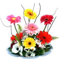 Gaziantep güvenli kaliteli hızlı çiçek  camda gerbera ve mis kokulu kir çiçekleri