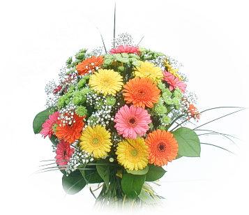 13 adet gerbera çiçegi buketi  Gaziantep çiçek gönderme