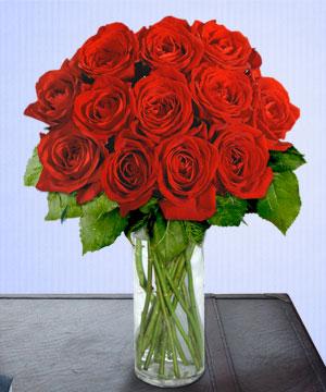 Anneme 12 adet cam içerisinde kirmizi gül  Gaziantep online çiçekçi , çiçek siparişi