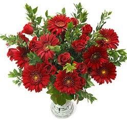 5 adet kirmizi gül 5 adet gerbera aranjmani  Gaziantep güvenli kaliteli hızlı çiçek
