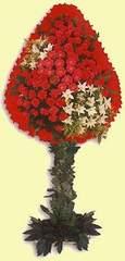 Gaziantep hediye sevgilime hediye çiçek  dügün açilis çiçekleri  Gaziantep çiçek siparişi sitesi
