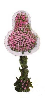 Gaziantep kaliteli taze ve ucuz çiçekler  dügün açilis çiçekleri  Gaziantep çiçek gönderme sitemiz güvenlidir
