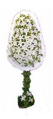 Gaziantep online çiçekçi , çiçek siparişi  nikah , dügün , açilis çiçek modeli  Gaziantep çiçek gönderme