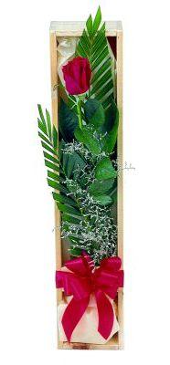1 adet kutuda kirmizi gül  Gaziantep 14 şubat sevgililer günü çiçek
