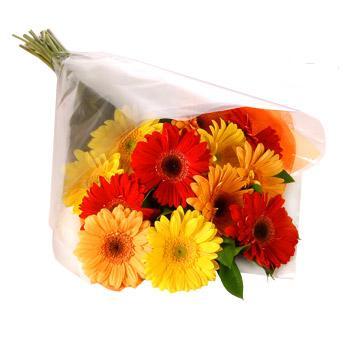 Karisik renklerde gerbera buketi  Gaziantep çiçek satışı